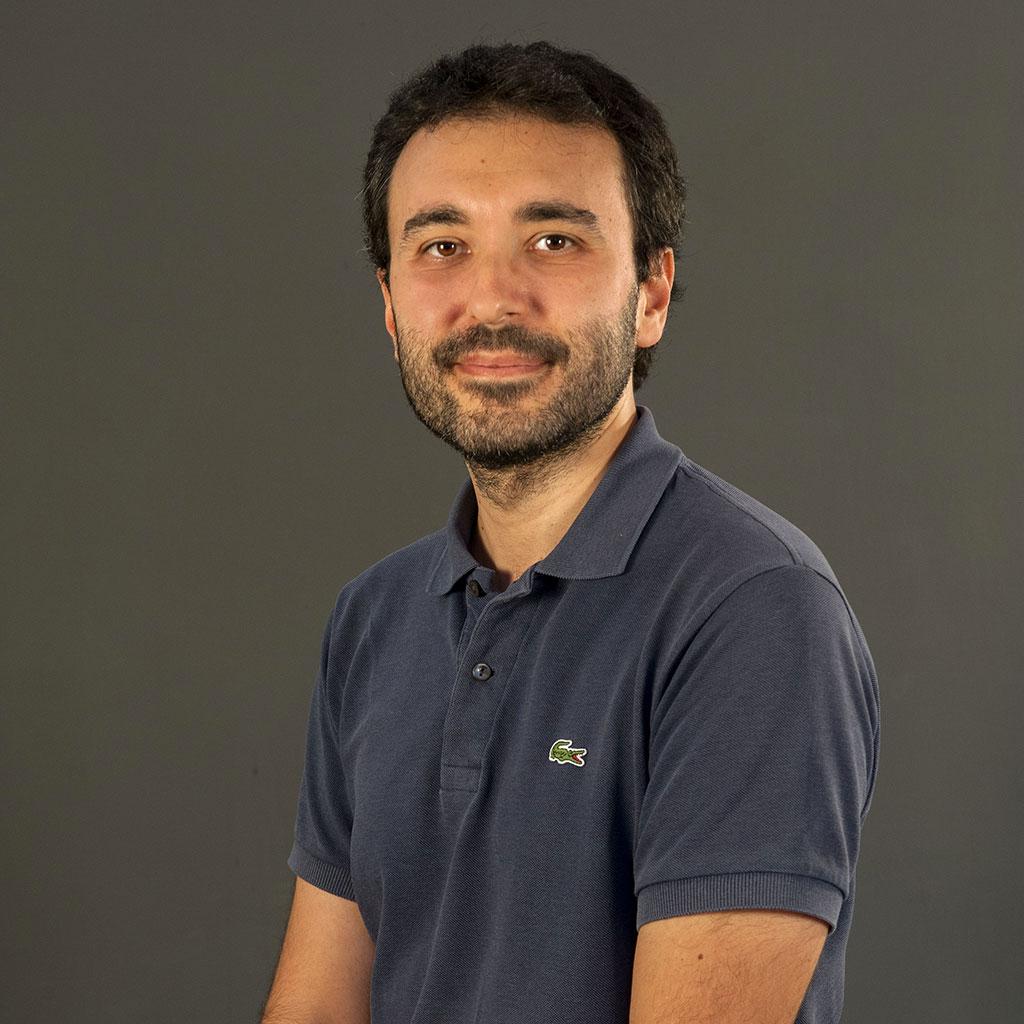 Matteo Flavio Mancini