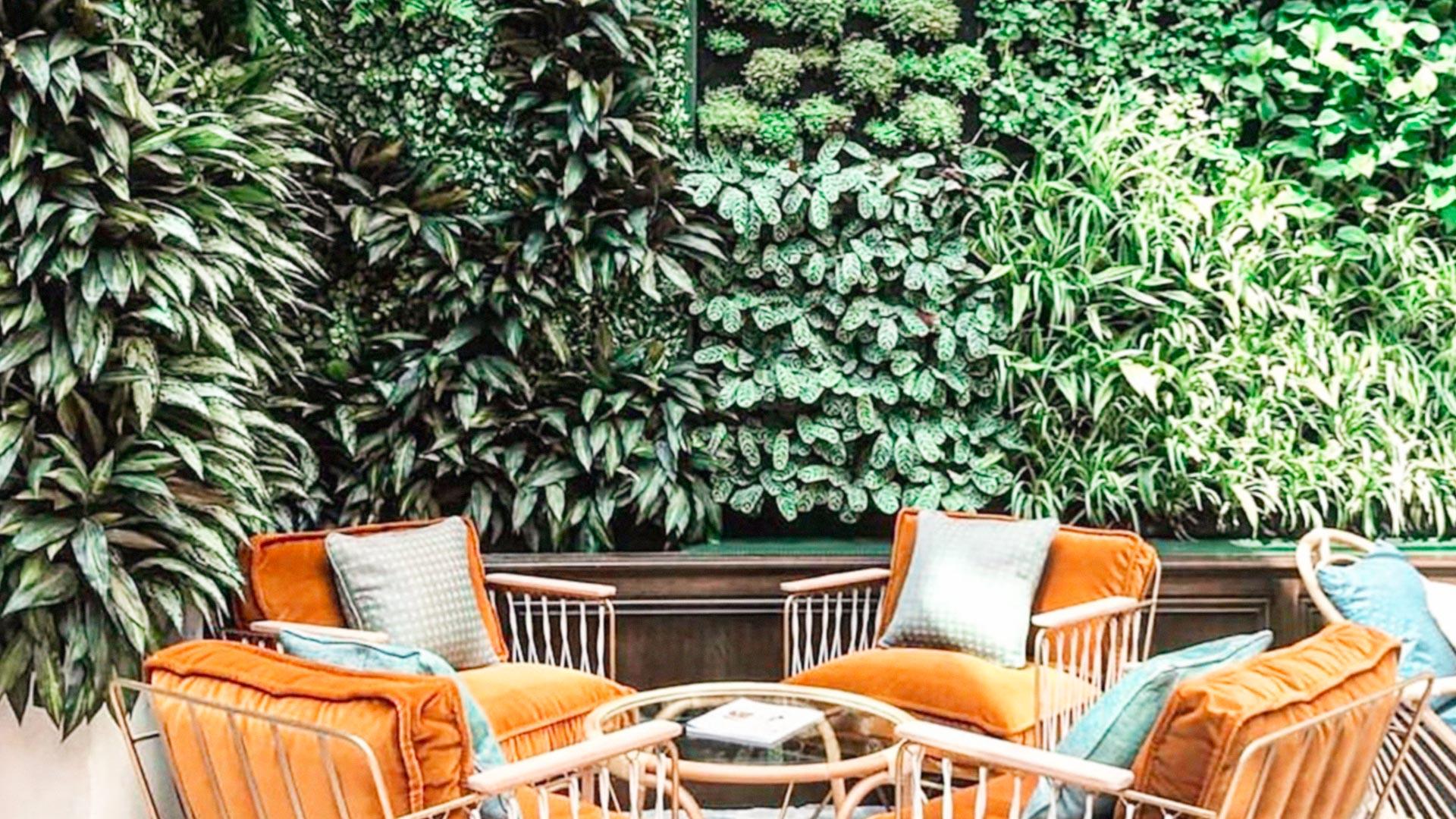 Corso breve di PLANTSCAPING DESIGN